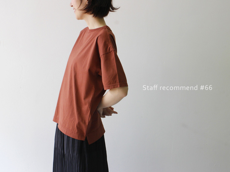 STAFF Recommend #66