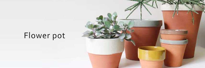 植木鉢を替えると雰囲気も変わります